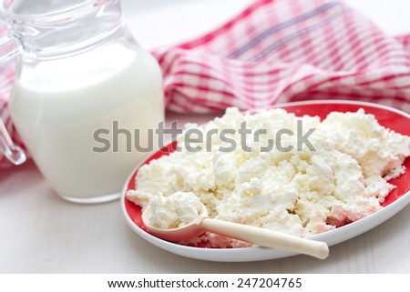 Fresh cottage cheese and milk  - stock photo