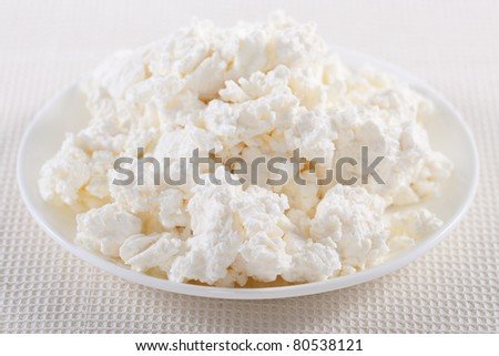 Fresh cottage cheese on the white plate - stock photo