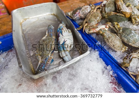 Fresh crab on a Market in Songkhla.
