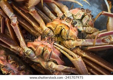 Fresh crabs at Tsukiji fish market, Tokyo, Japan  - stock photo