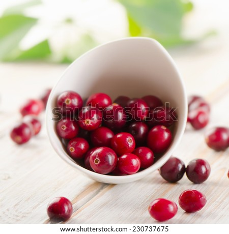 Fresh cranberries in a white bowl. Selective focus - stock photo