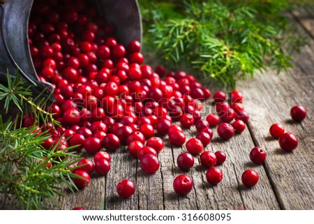 fresh cranberry (cowberry) on wooden background, selective focus - stock photo