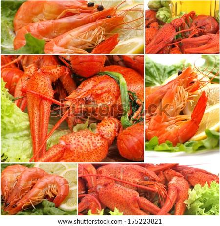 Fresh crawfish and shrimps - stock photo