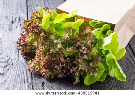 Fresh crispy lettuce and Lollo Rossa in a paper bag. The source of vitamins and minerals, detox, diet, health or vegetarian food concept - stock photo