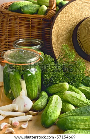 fresh cucumbers prepared for pickling with the horseradish and the garlic - stock photo