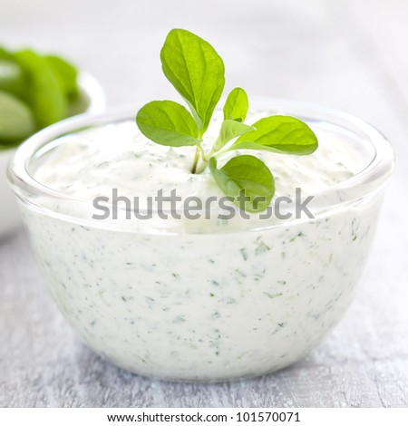 fresh curd with herbs - stock photo