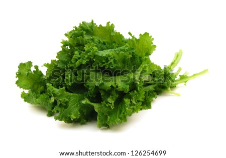 Fresh Curly Mustard Green Leaves - stock photo