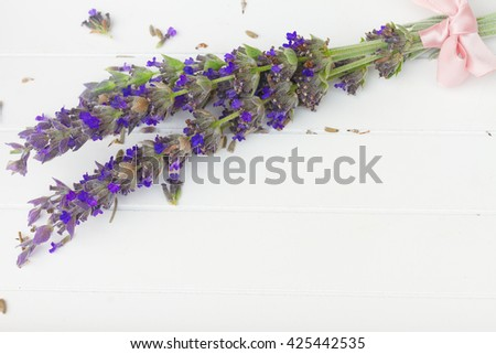 Fresh  cut lavender flowers  on white wooden table with copy space - stock photo