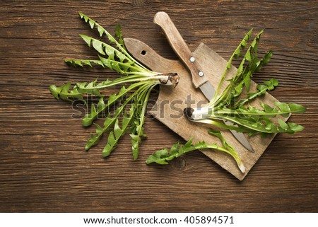 Fresh dandelion on wooden background overhead shoot - stock photo