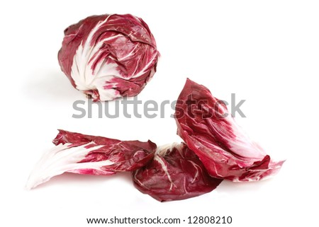 Fresh deep red white veined radicchio leaves with head in background