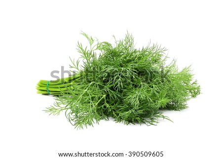 Fresh dill isolated on white background. - stock photo