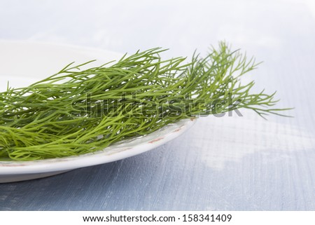Fresh dill on vintage plate on blue wooden background. Culinary aromatic herbs. - stock photo