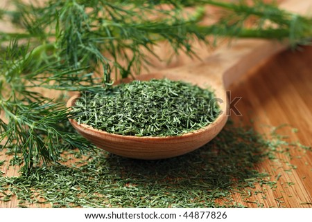 Fresh dill sprigs with  wooden spoon full of freeze-dried dill on bamboo cutting board.  Macro with extremely shallow dof. - stock photo