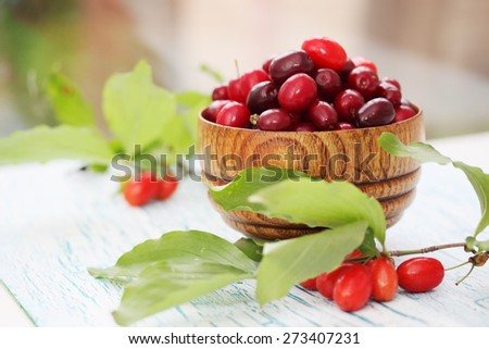 fresh dogwood in a wooden bowl on the table - stock photo