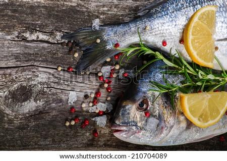 Fresh dorado fish - stock photo