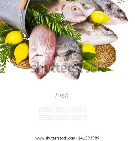 fresh Dorado fish and other fish in a tin bucket with fresh leaves and herbs and lemon isolated on white background - stock photo