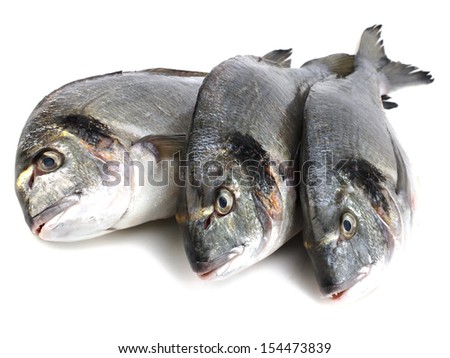 Fresh Dorado fish on a white background - stock photo