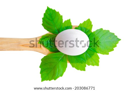 Fresh Duck Egg and leaves on ladle wood. isolated on white background - stock photo
