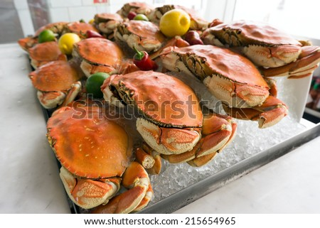 Fresh dungeness crab on ice at the seafood restaurant - stock photo