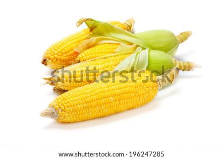 fresh ear of corn on white background - stock photo