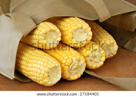 Fresh ears of yellow corn in reusable shopping bag.  Close-up with shallow dof. - stock photo