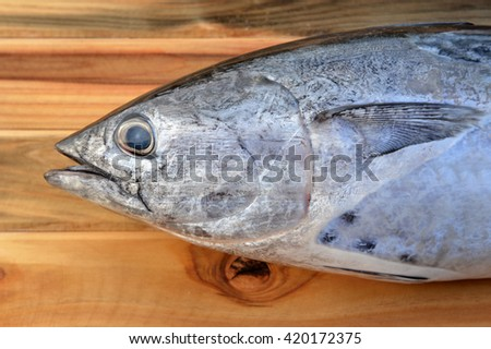 fresh eastern little tuna from fishery market with wooden photo in sunlight time - stock photo