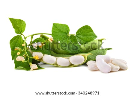 Fresh edamame soy beans with flowers and leaves in pod on white background - stock photo