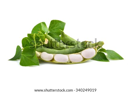 Fresh edamame soy beans with flowers and leaves on white background - stock photo
