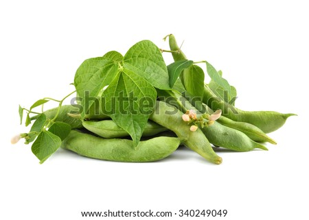 Fresh edamame soy beans with flowers and leaves on white background