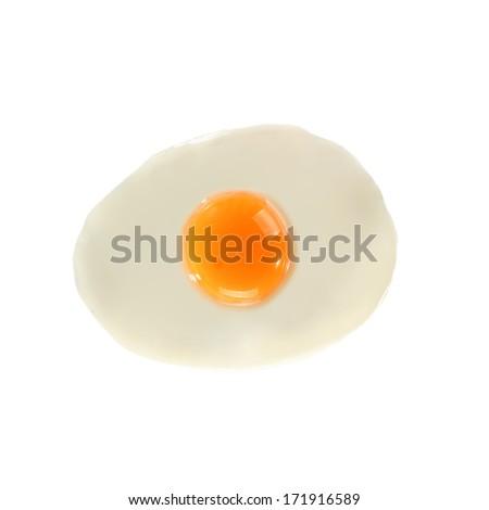 fresh egg on white  - stock photo