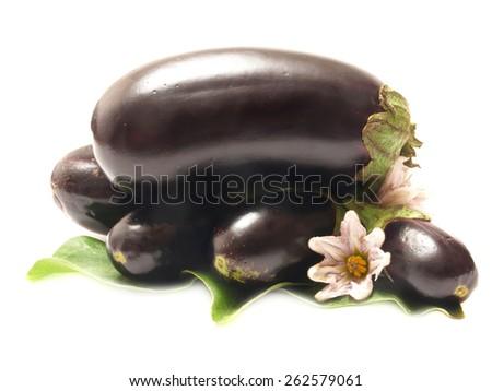 Fresh eggplant        - stock photo