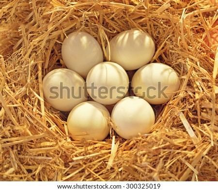 Fresh eggs on straw on display at a farmers market - stock photo