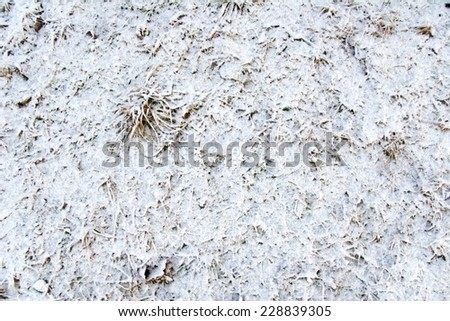 fresh fallen snow - good background or afterimage - stock photo