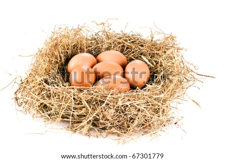 Fresh farm eggs in hay over white background