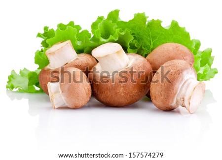 Fresh field mushroom and Leaves of green salad Isolated on white background - stock photo