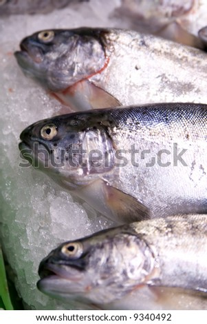Fresh fish8 - stock photo