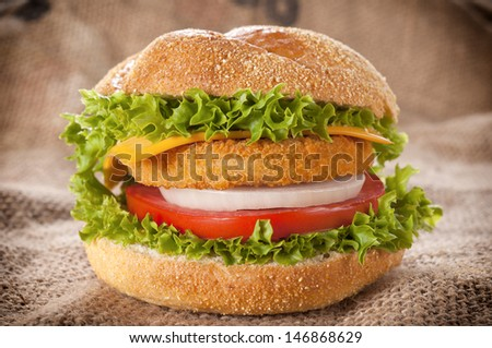 Fresh fish burger with tomato and onion  - stock photo