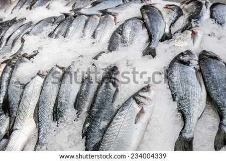 Fresh fish carcasses lie on ice crumbs on the counter - stock photo