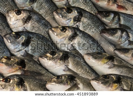 Fresh fish closeup at the seafood market. Display of catch of the day - stock photo