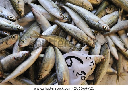 Fresh fish displayed for sale at a local fish market in Heraklion, the capital of the island of Crete, Greece - stock photo