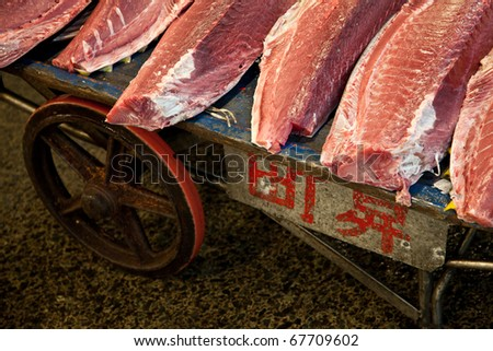 Fresh fish fillets at Tsukiji fish market in Tokyo, Japan - stock photo