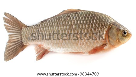 Edible fish stock photos images pictures shutterstock for Edible freshwater fish