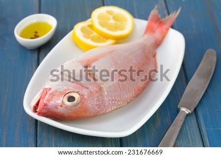 fresh fish on dish - stock photo