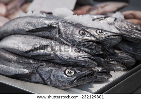 Fresh fish on ice in a Barcelona market - stock photo