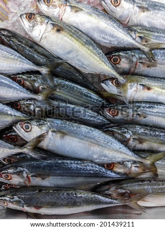 Fresh fish on ice in the market, Thailand - stock photo
