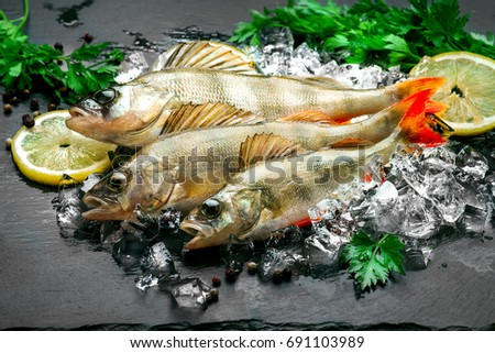 Nutrition concept stock images royalty free images for Aromatic herb for fish