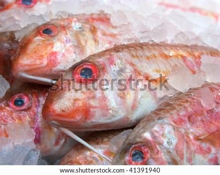 Fresh fish on sale at a market in London - stock photo