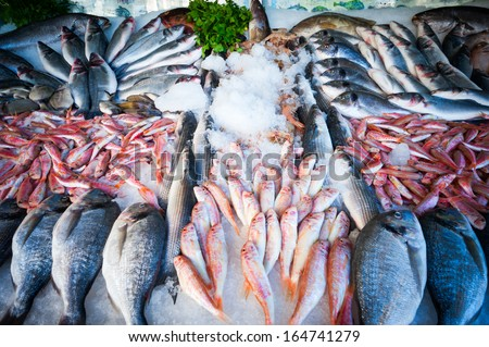 Fresh fish on the counter at a fish store - stock photo