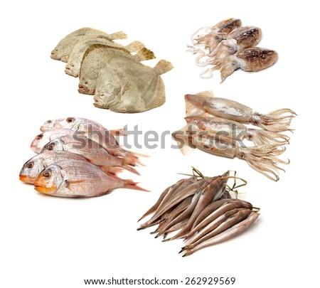 fresh fish on white background - stock photo