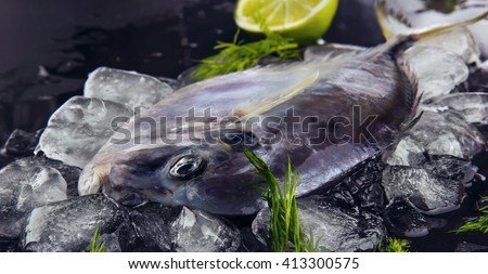 Fresh fish (Vomer or Selene setapinnis ) on melted ice dill,  dark stone background.Flat lay. Top view.Closeup